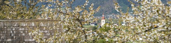Seefeld in tirol kostenlose partnersuche - Oberhaag frauen